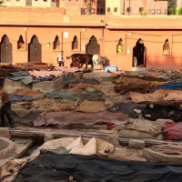THE TANNERIES OF MARRAKECH